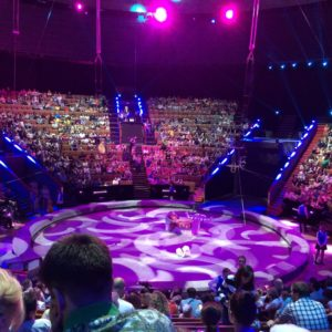 Great Moscow State Circus