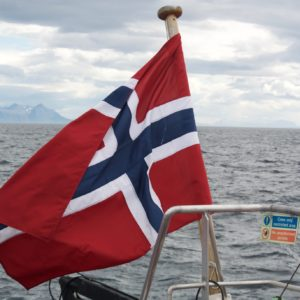 Walvissen tour Arctic Whale Tours
